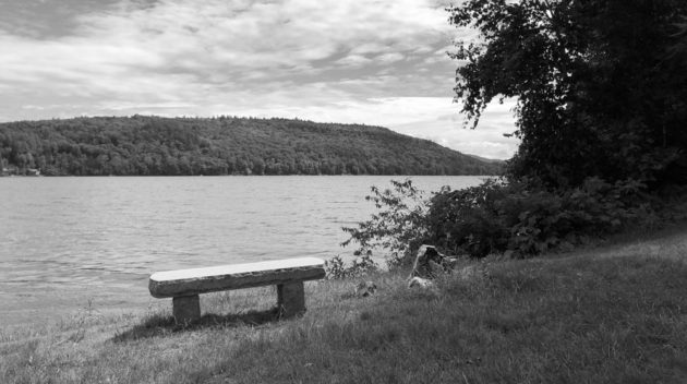 A black and white view of a bench at the shore of a lake.