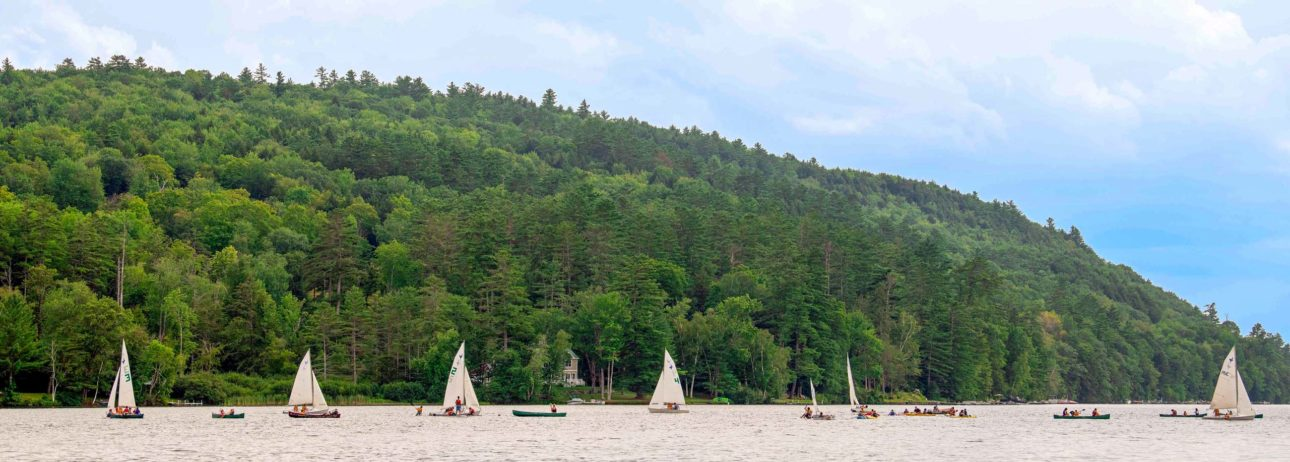 Sailboats on the lake.