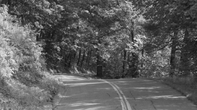 A black and white view of a road.
