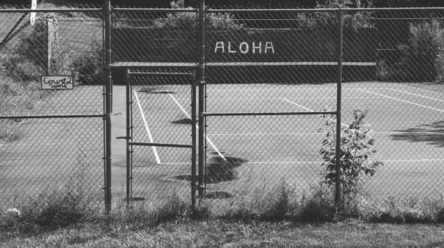 A black and white view of a chainlink fence.