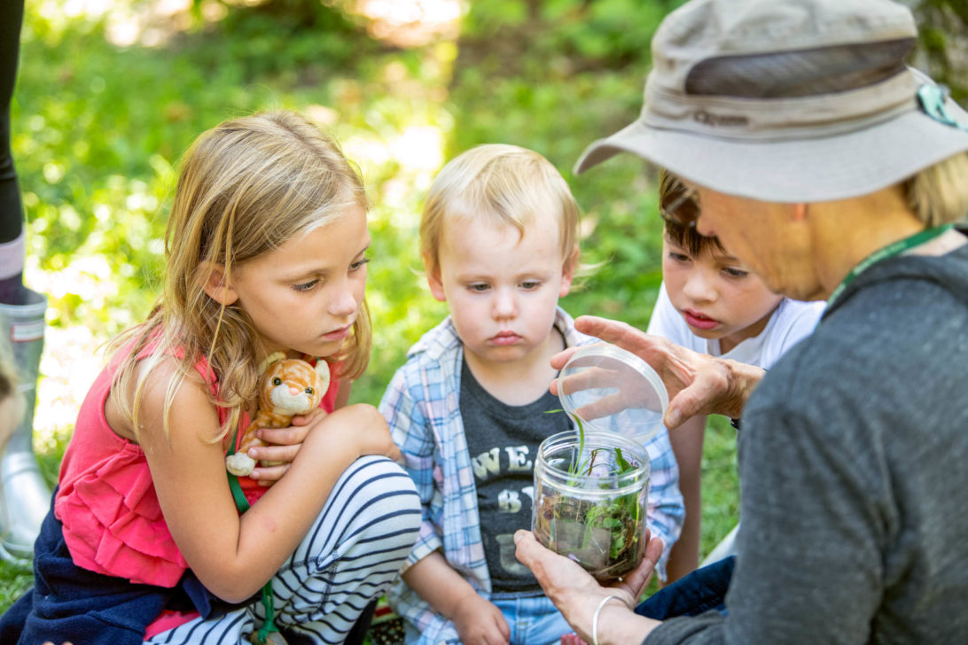 A person showing three children a jar with plants.
